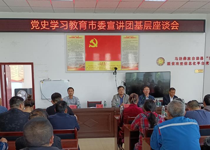 市委宣讲团第三分团走进马边民建镇开展基层座谈会